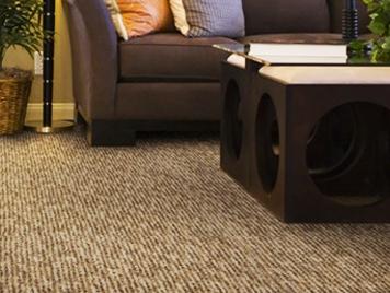 lexmark carpet rich loom at american carpet wholesalers