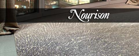 nourison area rugs