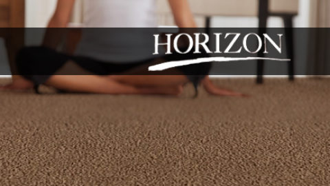 Horizon Carpet Review
