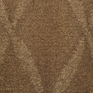 stainmaster trusoft top sail heritage carpet