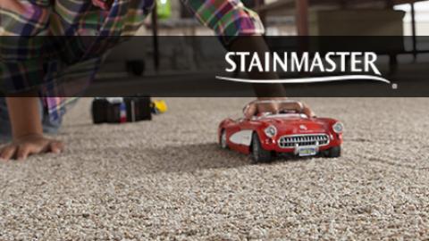 Stainmaster Carpet Warranty