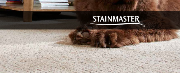 stainmaster petprotect carpet
