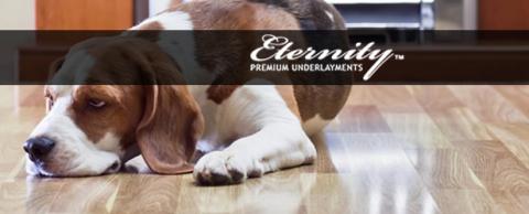 Eternity LVT SG No VOC Underlayment Review